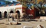 Zoo de Lisboa by Juntas 52.jpg