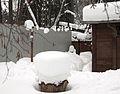 «Снежные бусы» (5445134920).jpg