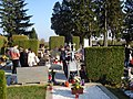 Čakovečko groblje; Svi sveti - grobovi u čempresu.jpg