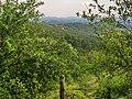 Županjac, Serbia - panoramio.jpg