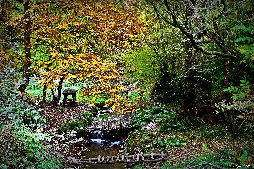 Јелашничка река