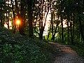 Дальняя аллейка возле вершины холма парка Горка Кристера.jpg