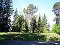 Зрительские места - panoramio.jpg