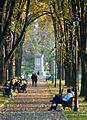 Карађорђев парк, Београд.jpg