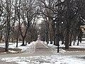 Міський сад міста Чернігова.jpg