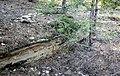 Непран Вячеслав, Осинівські піщаники, геологічна Пам'ятка природи, 44-233-5002, 49°33'14.4N 39°04'09.7E (4).jpg