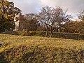 Олександрія - panoramio (23).jpg