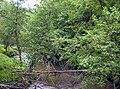 Река Кырчанка у села Кырчаны Нолинского района Кировской области.jpg