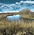 Речка Нежеголь в районе Титовка - panoramio (1).jpg