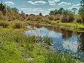 Річка Хорол весною (на місці гирла р. Хорол).jpg