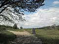 Тарасова стежка.май 2012 - panoramio.jpg