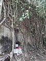 วัดบางกุ้ง จ.สมุทรสงคราม Wat Bangkoong of Samutsongkhram.jpg