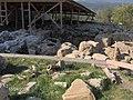 ძველი მარანი გელათის მონასტერში (G.N. 2009).jpg