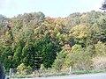 岐阜県飛騨市古川町畦畑 - panoramio.jpg