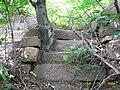 望海寺遗址wanghai temple ruins - panoramio - 白云悠悠 (2).jpg
