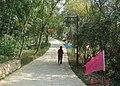 杭州. 半山公园.(龙山水库东边) - panoramio.jpg