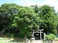 浮島神社 - panoramio.jpg