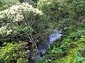 金瓜寮溪 Jingualiao Creek - panoramio (4).jpg