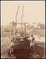 -Two Boys Beside a Well- MET DP71198.jpg