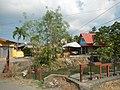 01873jfPinagbarilan Cantulinan Irrigation Baliuag Bulacan Dikes Roadfvf 09.JPG