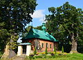 02014 Die Kirche Konzil Gottesmuter, 1859 erbaut, Hlomcza.NEF.jpg