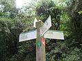 034 Parc de Collserola, pal indicador.jpg