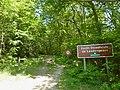 082 Landévennec Forêt domaniale.jpg