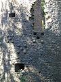 12 08-08 Château de Ranrouët 018.jpg