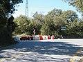 149 (il sito dei futuri tunnel principali L.V.) 17.jpg