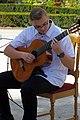 18.8.16 Guitars and Accordians in Trebon 14 (28463426173).jpg