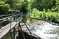 180509-6 bei der Hegnacher Mühle.jpg