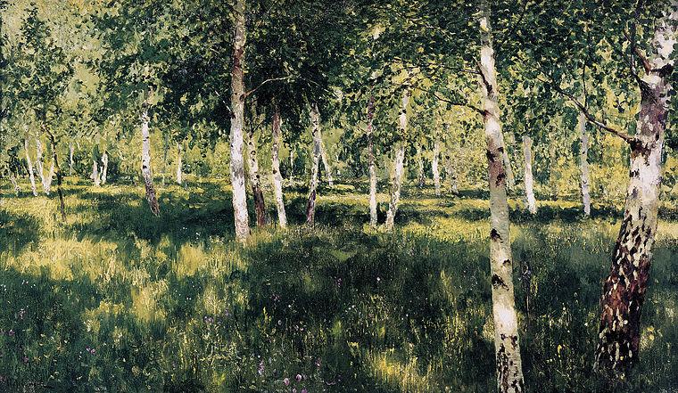 https://upload.wikimedia.org/wikipedia/commons/thumb/6/6b/1885-1889_Birkenhain.jpg/760px-1885-1889_Birkenhain.jpg