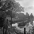 1967 l'étang du CNRZ-2-cliche Jean Weber.jpg