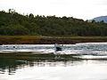 20070802 Kjerfjordstraumen.jpg