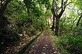 2012-10-26 13-10-54 Pentax JH (49282308716).jpg