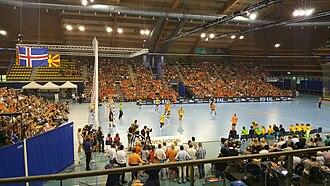 Sweden women's national handball team - Sweden during a friendly match against the Netherlands in 2016