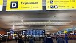 20190221 155615 Sheremetyevo Airport terminal D February 2019.jpg