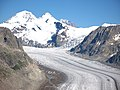 3623 - Aletschgletscher und Mönch viewed from Eggishorn.JPG