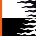600px Bianco e Nero listati di Arancione.png