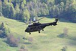 75 jahre Militärflugplatz Alpnach 09.jpg