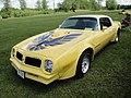 76 Pontiac Trans Am (7305720100).jpg