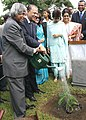 A.PJ. Abdul Kalam and The Prime Minister of Mauritius Dr. Navinchandra Ramgoolam jointly watering a plant after a tree planting ceremony at the Ramgoolam Botanical Garden at Port Louis, Mauritius on March 12, 2006.jpg