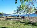 AU-Qld-Townsville-Rowes-Bay-towards-channel-20110526.jpg