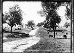 A Cattle Station (4903836350).jpg