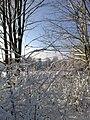 A winter view clowne church - panoramio.jpg