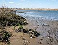 Abandoned bike (10861).jpg