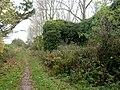 Abbotsbury, ruin - geograph.org.uk - 1528802.jpg