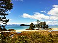 Abel Tasman trail, National Park, South Island, New Zealand - panoramio (9).jpg