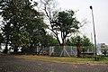 Acharya Jagadish Chandra Bose Indian Botanic Garden - Howrah 2011-02-20 1601.JPG