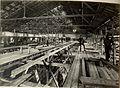 Adaptierung der gedeckten Reitschule in Seebach zur Unterkunft für 3000 Mann. Herstellung der Zimmerarbeiten im Innern der Reitschule. Aufgenommen am 21. Juli 1916. (BildID 15477870).jpg